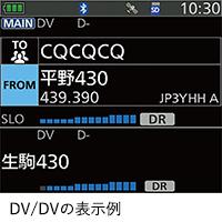 DV/DVの表示例